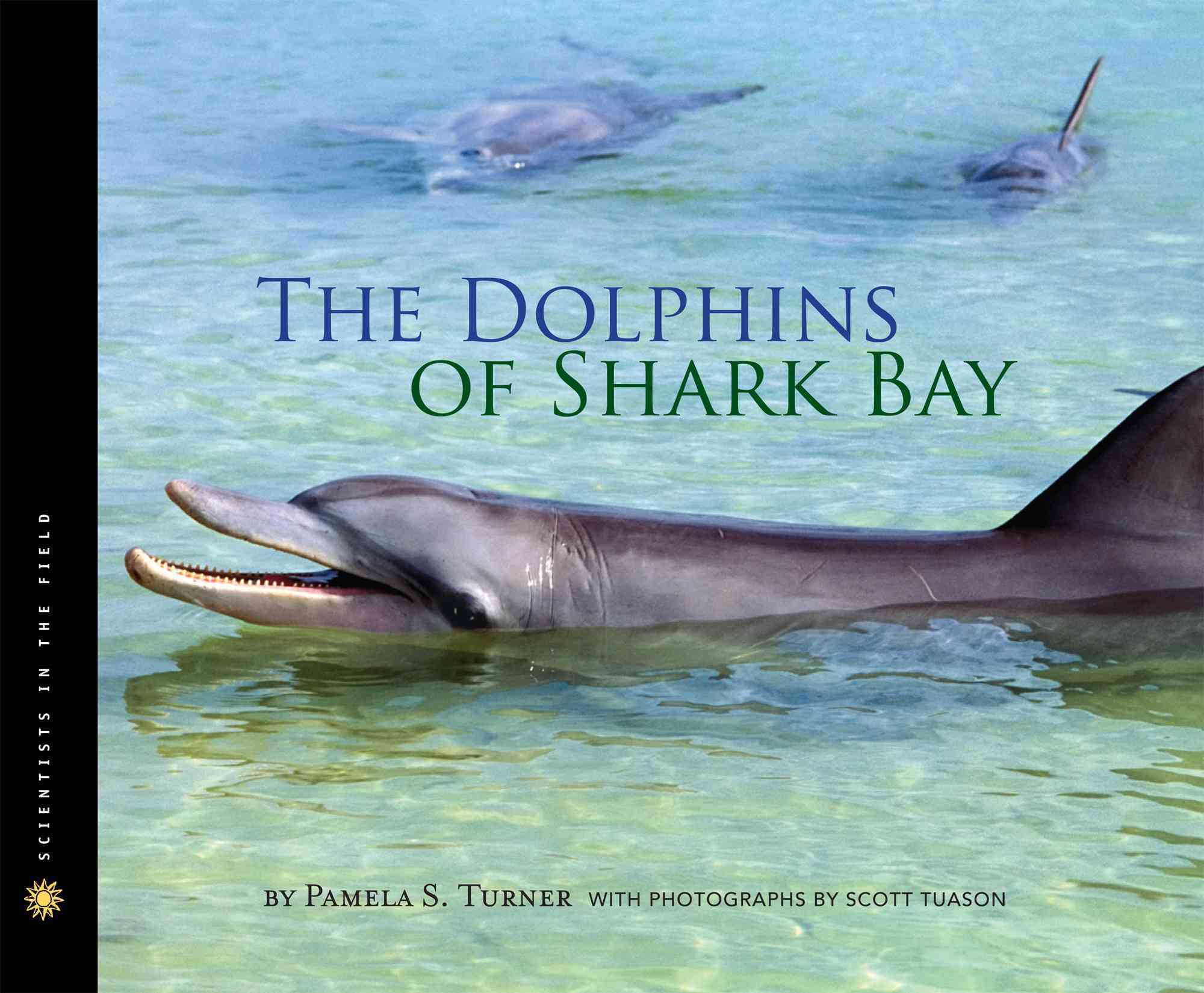 The Dolphins of Shark Bay By Turner, Pamela S.